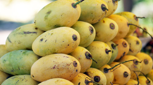 khmer mango