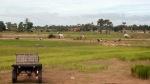 Rice Field, Kampong Speu, Cambodia, វាលស្រែ, ខេត្តកំពង់ស្ពឺ, ប្រទេសកម្ពុជា, ប្រទេសខ្មែរ, ស្រុកស្រែ, ទីជនបទ