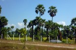 Yangon, Naypyidaw, Myanmar, Uppatasanti Pagoda, វត្តអាប់ប៉ាតាសន្តិ, ទីក្រុងយ៉ាំងហ្គូន, ទីក្រុងណៃពិដោរ, ប្រទេសភូមា, សហភាពមីយ៉ាន់ម៉ា